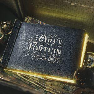 Dagboek van opa's fortuin